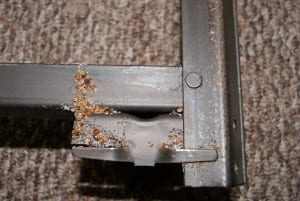 Bedbugs on a bed frame. Bed Bugs Control Omaha