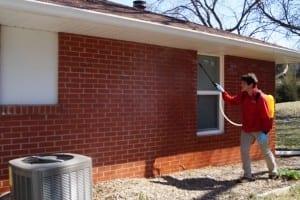 Exterior Pest Control Services
