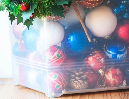 Guide To Pest-Free Holiday Decorations